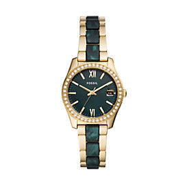 Scarlette Mini Three-Hand Date Two-Tone Acetate and Stainless Steel Watch