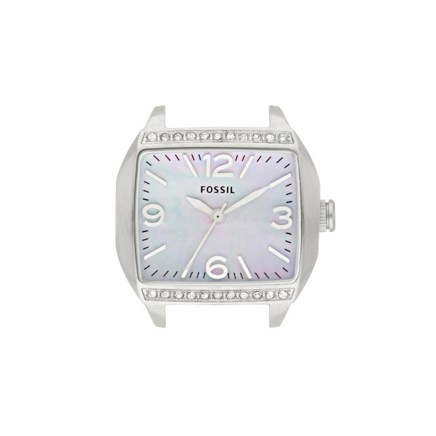 Roland Stainless Steel Watch Case - White