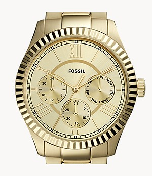 Chapman Multifunction Gold-Tone Stainless Steel Watch