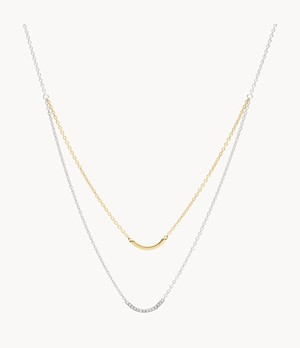 Double Arched Bar Two-Tone Steel Necklace