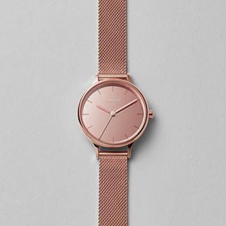 Anita Mirror Steel Mesh Watch