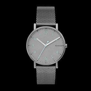 Signatur Titanium and Steel-Mesh Watch